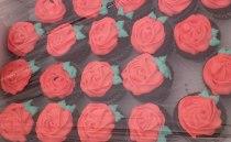 05 sant jordi França 2012, parada, ampa, magdalenes, llibres, roses, llibre doc